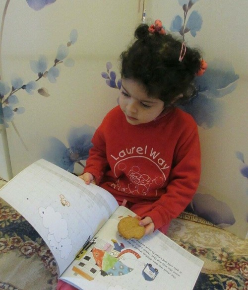 Maryam is browsing The Snowman and the Sun